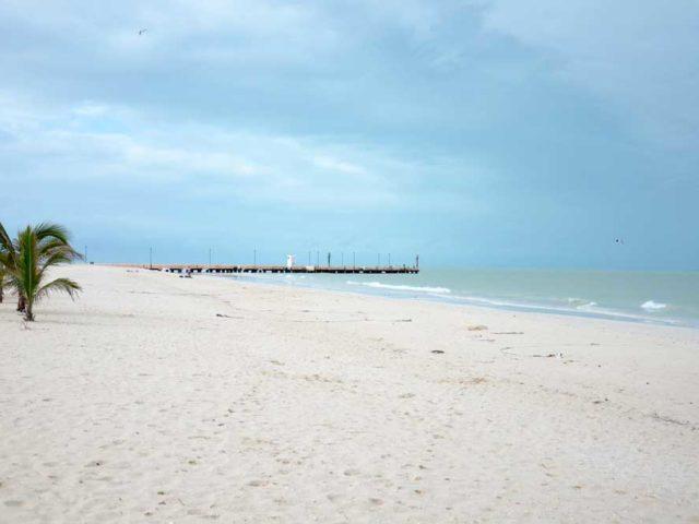 Strand-Celestun2